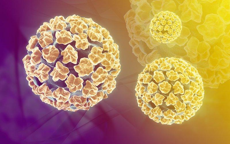 Virus HPV chết ở nhiệt độ bao nhiêu